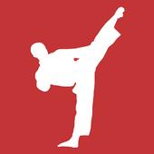 Mastering Taekwondo icon