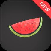 Melon VPN icon