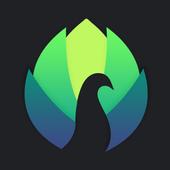 Peafowl Theme Maker for EMUI 5.X/8.X/9.X/10.X icon