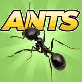 Pocket Ants icon