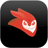 VideoLeap Editor Mini icon
