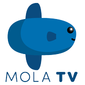Mola TV icon
