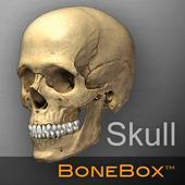 BoneBox™ - Skull Viewer icon