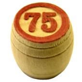Russian Loto - 90 Ball Bingo icon