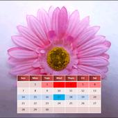 My Menstrual Diary icon