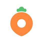Karrot icon