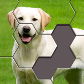 Hexa Jigsaw icon