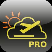 MetarDroid Pro icon