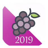 New Year Countdown 2019 icon