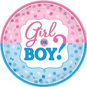 Baby Gender (using Chinese birth calendar) icon