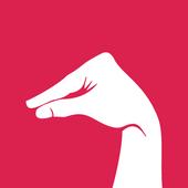 DuckTheLine icon