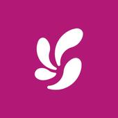 fondi icon
