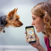 Dog Language Translator icon