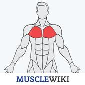 MuscleWiki Fitness icon