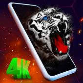 4D Wallpaper - Slime icon