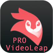 Android VideoLeap Editor PRO Guide icon